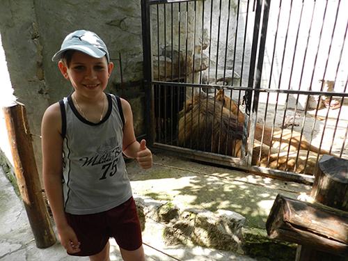 Зоопарк 22